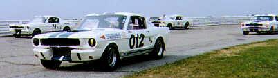Vintage GT350s at Pocono Raceway, SVRA 1996